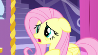 """Fluttershy """"how did it get into ours?"""" S5E13"""