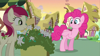Pinkie Pie And Rose S02E18