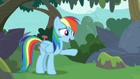 """Rainbow """"only if you want to build a bridge"""" S8E9"""