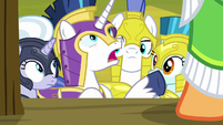 "Shining Armor ""what are you doing?"" S9E4"