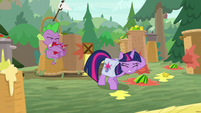 Spike gets hit with a tomato S9E5