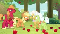 """Applejack """"pretendin' the Great Seedlin' did it"""" S9E10"""