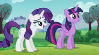 """Rarity """"...in order to do our best work"""" S5E24"""