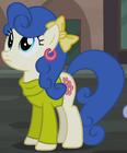 Blueberry Curls