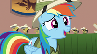 "Rainbow Dash ""this is the..."" S6E13"