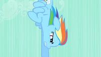 Rainbow Dash speeding downward S01E19