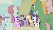 Villagers circle around Starlight S5E2.png