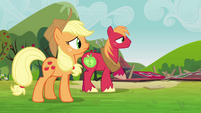 Applejack and Big Mac watch the clones leave S3E03
