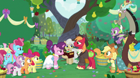 Big Mac and Sugar Belle getting married S9E23