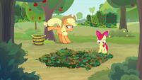 AJ bucks a tree as Apple Bloom sets a trap S9E10
