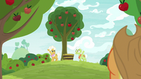 Granny Smith and Goldie on a hilltop S9E10