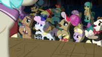Manehattan ponies applaud Applejack and Rarity S5E16