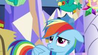Popinjays flutter over Rainbow's head S5E3