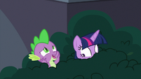 "Spike ""Twilight Sparkle in a library?"" S9E5"