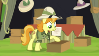 Daring Do collector packing up S4E22