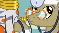 Dr. Horse listening to Zecora's heartbeat S7E20