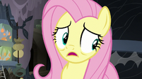 """Fluttershy """"I wasn't making my excited squeaking noise"""" S7E20"""