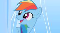 Rainbow Dash true joy smile S01E16