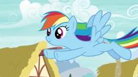Rainbow flies through Ponyville S6E7