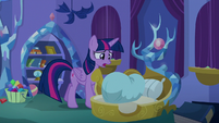 """Twilight Sparkle """"what are you doing?"""" S8E11"""
