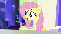"Fluttershy ""just left his own factory"" S9E14"