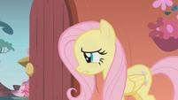 "Fluttershy ""umm actually"" S01E07"