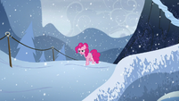 Pinkie walks in the snow S5E11