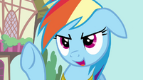 "Rainbow Dash ""say no more!"" S03E13"