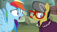 """Rainbow Dash """"you're giving up writing stories"""" S7E18"""