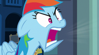 "Rainbow Dash angrily shrieking ""stop!"" S7E7"