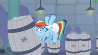 Rainbow hits a barrel of snow S5E5