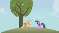 S01E04 Padnięta Applejack zbiera jabłka