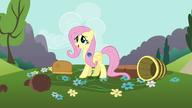 S01E10 Fluttershy z paraspritem w grzywie