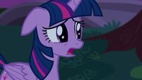 Twilight -a way to undo the damage- S5E12