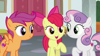 "Apple Bloom ""we've still got lots to learn"" S8E12"