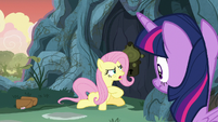 Fluttershy -if the doorway is sealed up- S7E20