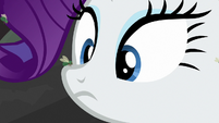 Fly lands on Rarity's nose S8E25
