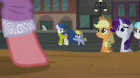 Mother and foal pass by the stage S5E16