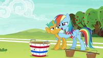 "Rainbow Dash ""with you on the team"" S6E18"