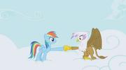 Rainbow and Gilda hoof-bump again S1E05.png