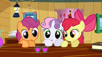 Cutie Mark Crusaders potion S02E17