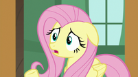 """Fluttershy """"they don't have anywhere to go!"""" S7E5"""