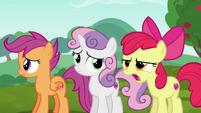 "Apple Bloom upset ""passenger seat?!"" S6E14"