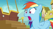 "Rainbow Dash ""seriously?!"" S8E5"