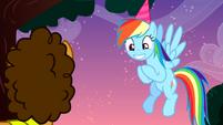 """Rainbow Dash """"the best birthday anniversary super combo"""" S4E12"""