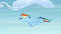 Rainbow flying fast S4E10