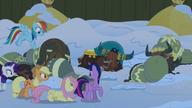 S07E11 Kucyki przekradają się obok śpiących jaków