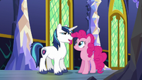 Shining Armor -we have something special planned- S5E19