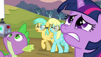 Twilight, Spike and two pegasi looking up S2E22