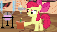 """Apple Bloom """"of this potion-makin'"""" S4E15"""
